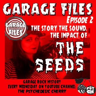 Our new Series GARAGE FILES all about garage rock